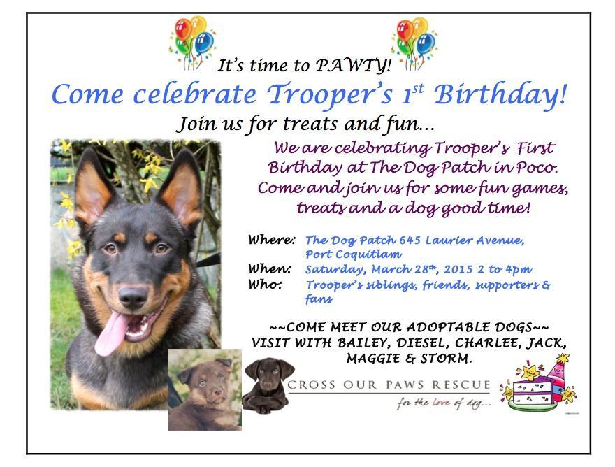 TrooperPoster2