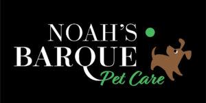 Noah barque