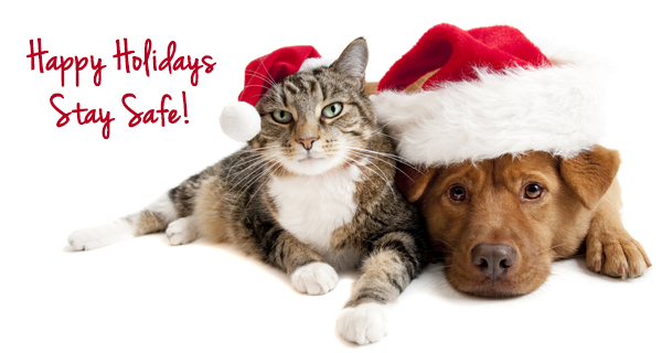 happy-holidays-stay-safe-banner